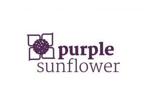 purple-sunflower